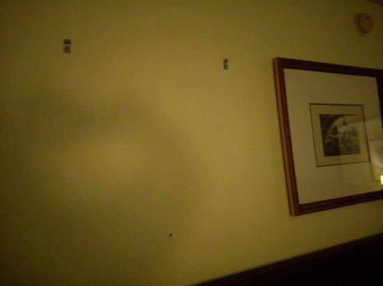Plaza Hotel: IMAG0017_large.jpg