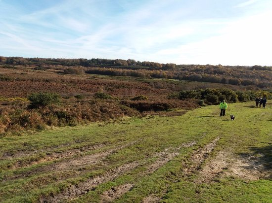 Wych Cross, UK: One of the Ashdown Forest walks - November 2017