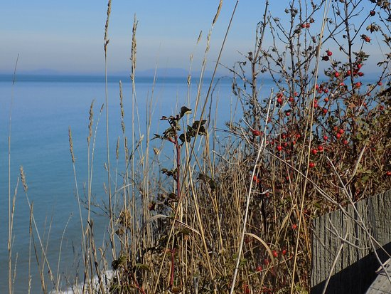 Sequim, Вашингтон: This was taken at one of the overlooks of the Sound. The land mass across the water is Canada.