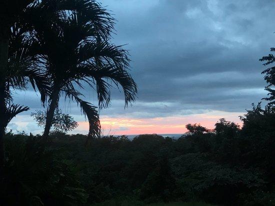 Ostional, Costa Rica: photo1.jpg