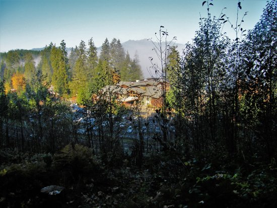 Union, WA: View of the resort from trail above