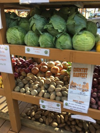 Perkins Orchards: Perkins Orchard offers so much more! Not only does it offers fruit but, it offers fresh vegetabl