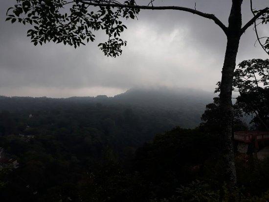 Teocelo, Mexique : 20171126_164216_large.jpg
