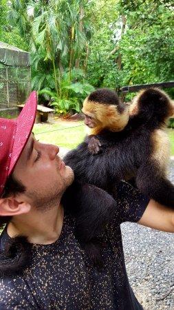 Gumbalimba Park: With my monkey friend!