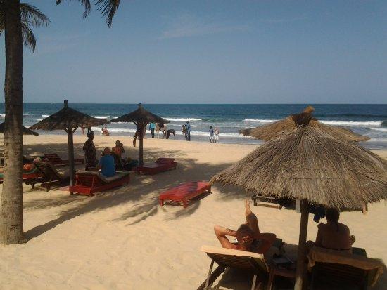 Kombo Beach Hotel: Hotellin rannalla oli myös välillä hevosia ja pikkuinen varsakin