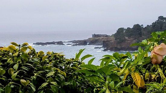 Little River, Καλιφόρνια: Breakfast View