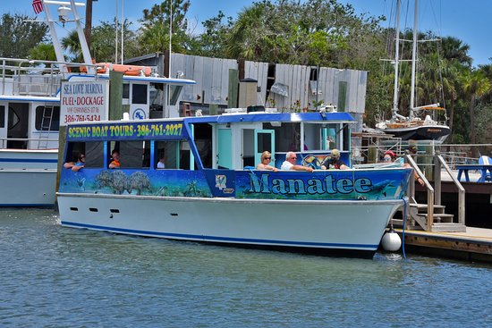 Ponce Inlet, ฟลอริด้า: Manatee Tour Boat