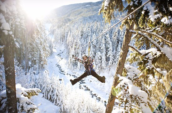 Ziptrek Ecotours Whistler 2018 All You Need To Know Before Go With Photos Tripadvisor