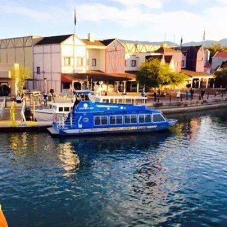 Lake Havasu Jet Boat Tours