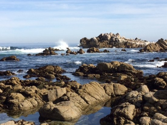 Asilomar State Beach: Gorgeous vistas