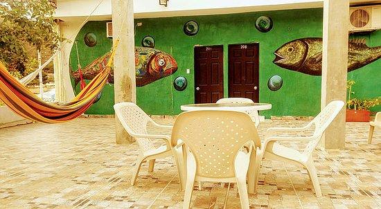 Taganga Dive Inn : Terraza del segundo piso con hamacas.