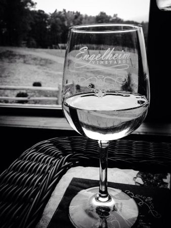 Ellijay, Джорджия: Come have a glass of wine with us!