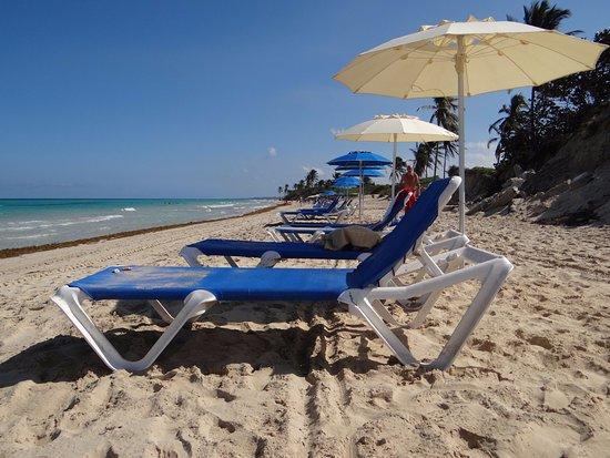 Sdraio Per La Spiaggia.La Spiaggia Con Ombrelloni E Sdraio Nuove Picture Of Hotel