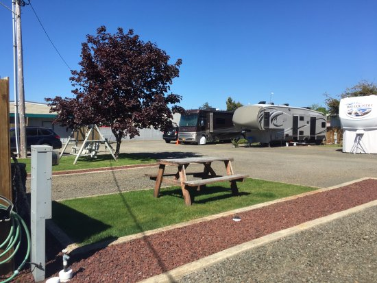 Long Beach, WA: Picnic table and grassy area for each RV spot