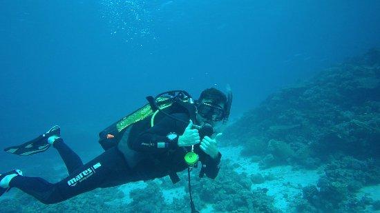 Emperor Divers El Gouna - Day Trips Image