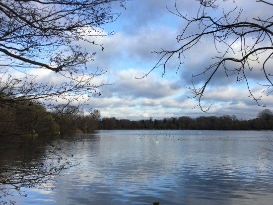 Rickmansworth, UK: Lakes at the Aquadrome