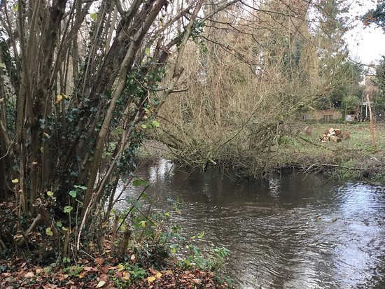 Rickmansworth, UK: Woodland stream