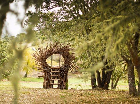 Post Ranch Inn: The Spirit Nest