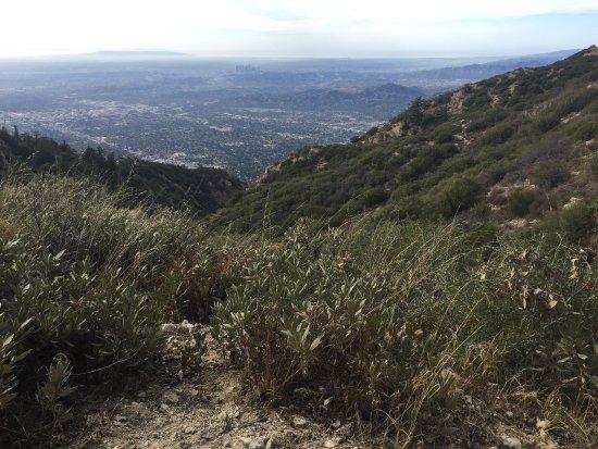 Altadena, CA: photo1.jpg