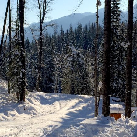 Fernie, Kanada: Ski and enjoy the views as you go