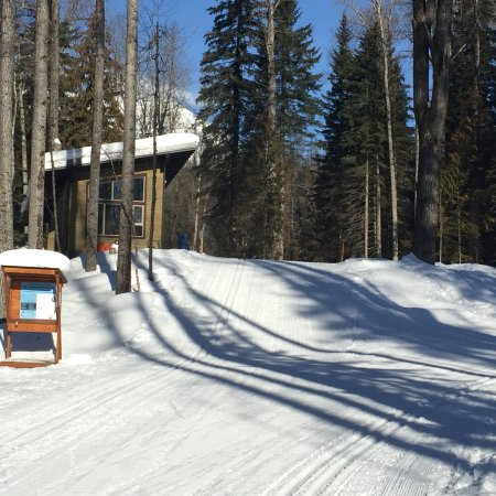 Fernie, Canadá: Ski and enjoy the views as you go