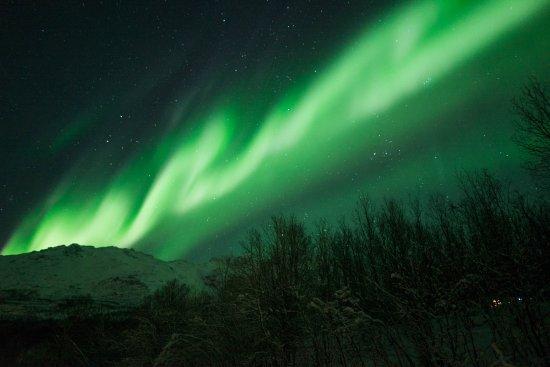 Tromso Northern Lights Foto Van Northern Lights Troms 248