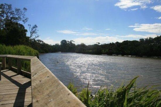 Tarwin River