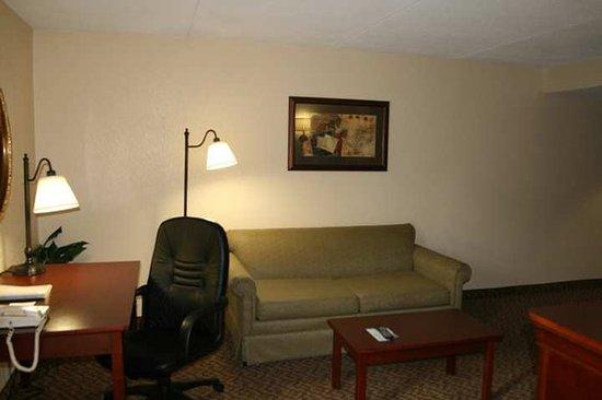 Ashland, VA: Suite