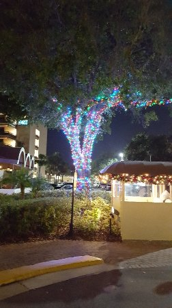 Rosen Inn at Pointe Orlando: 20171125_182549_large.jpg