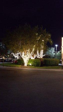 Rosen Inn at Pointe Orlando: 20171125_182554_large.jpg