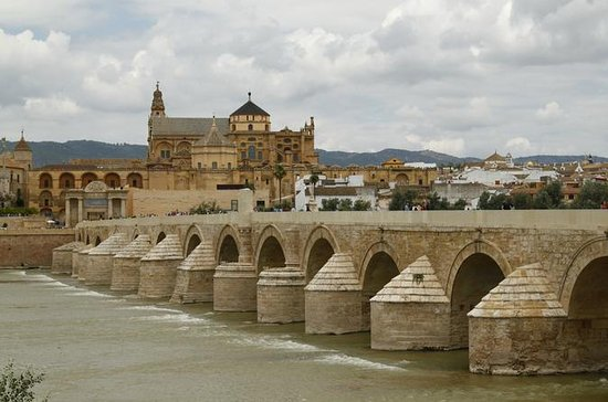 Full-day Cordoba Tour från Sevilla ...