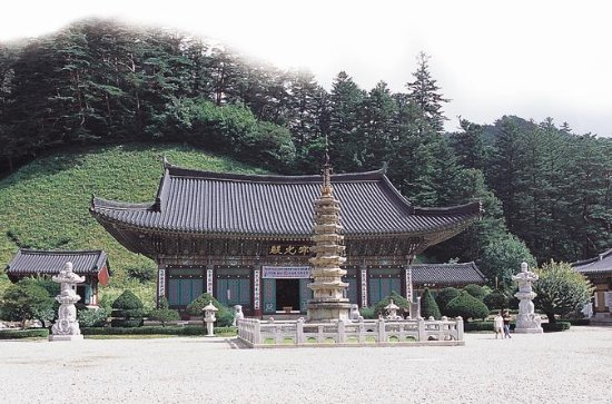 2-Day Bus Tour to Gangwon-do from...