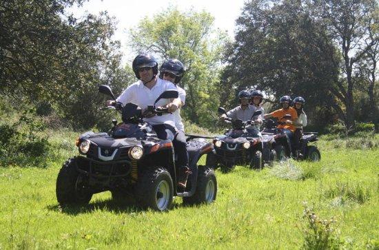 Esperienza in quad per piccoli gruppi