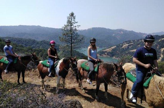 Tour a caballo de Sonoma