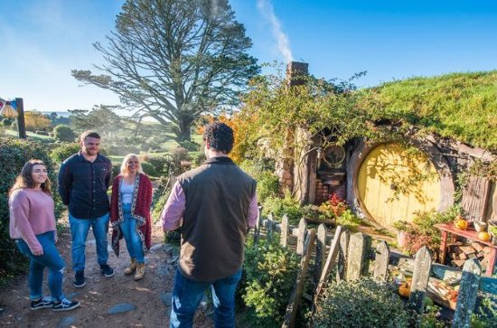 Luxury Small Group: Guided Hobbiton...