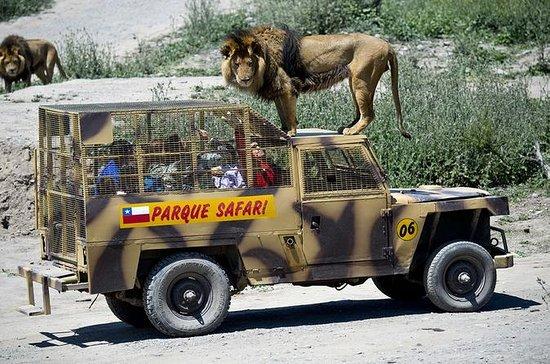Entrada al Parque Safari