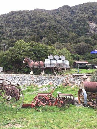 Westland National Park (Te Wahipounamu), New Zealand: Front grounds