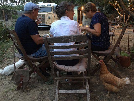Salleles-d'Aude, France: Dogs and roosters are welcome to attend the tables