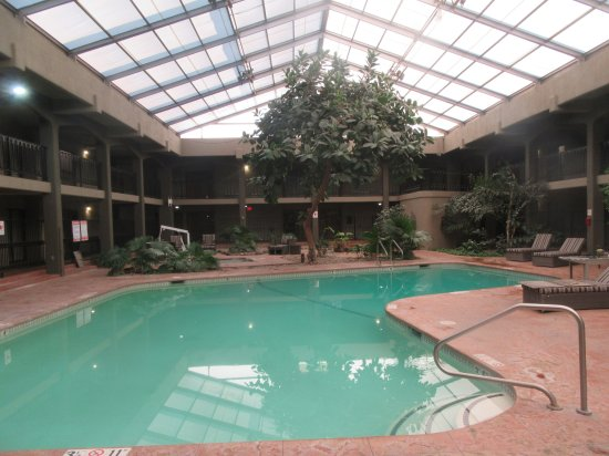 Inedoor Swimming Pool Wyndham Hotel And Convention Center Albuquerque Nm Picture Of Wyndham