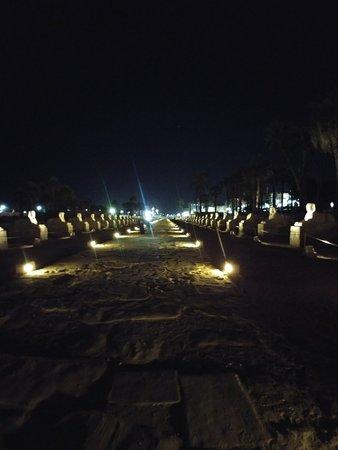 Avenue of Sphinxes: 20171121_193810_large.jpg