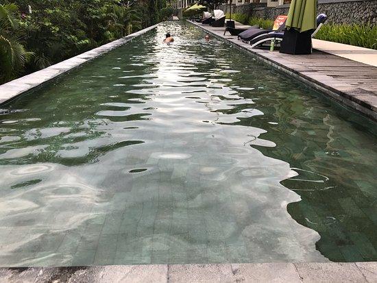 Kebun Villas & Resort: 75m long pool great for laps in the morning