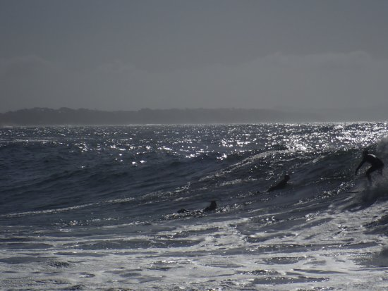 Victoria Bay, South Africa: Hollow Swells
