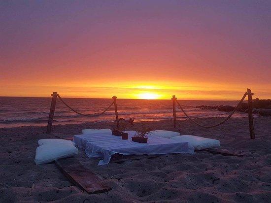 Tofta, Sweden: Surflogiet