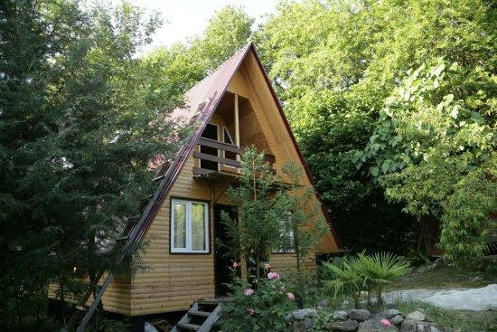 Golovinka, Russia: Четырех комнатный домик