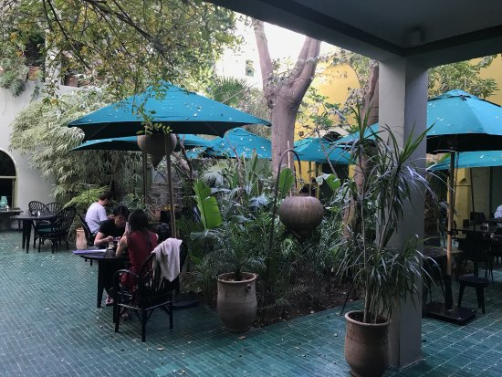 Billede af le jardin marrakech tensift el for Le jardin 32 route sidi abdelaziz marrakech 40000