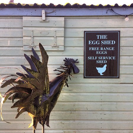 The Egg Shed & The Hen House: The Hen House & Egg Shed