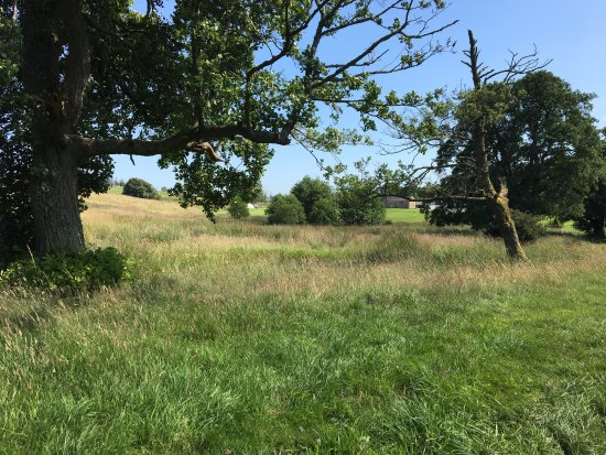 Bellingham, UK: a little wilder than most sites