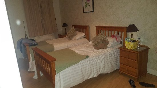 Ballycanal Accommodation - B&B & Self Catering cottages: 20171125_234544_large.jpg