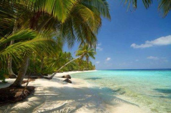 Karibien-bild
