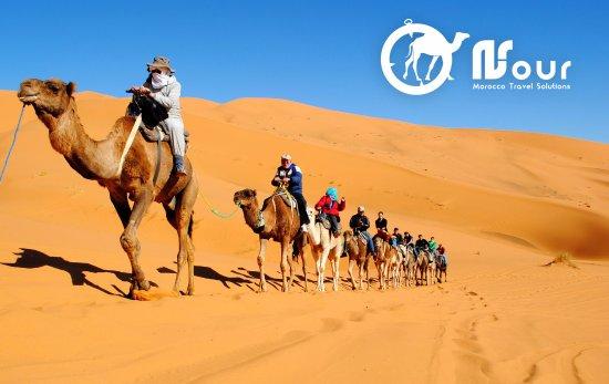 Nour Safari
